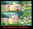 мемы про пони 2.